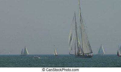 old sail regatta 07