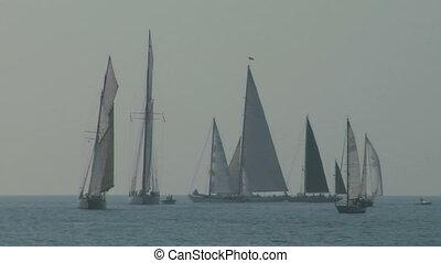 old sail regatta 09