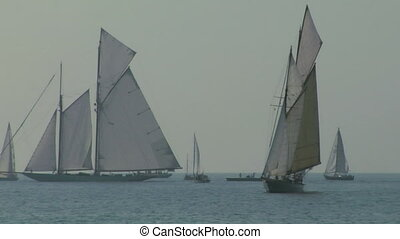 old sail regatta 10