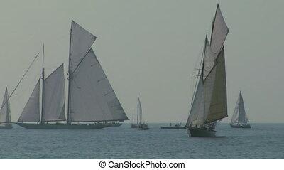 old sail regatta 10
