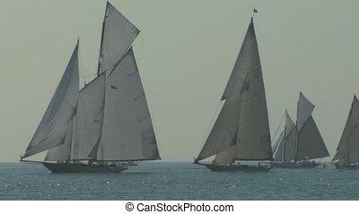old sail regatta 15