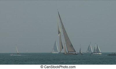 old sail regatta 16