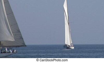 old sail regatta 22