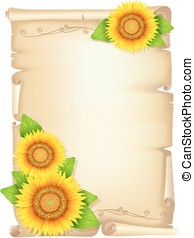 Old scroll with sunflower
