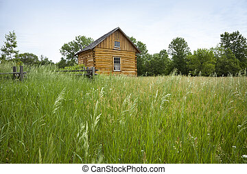 Old settler's cabin viewed from grassy field - Log cabin...
