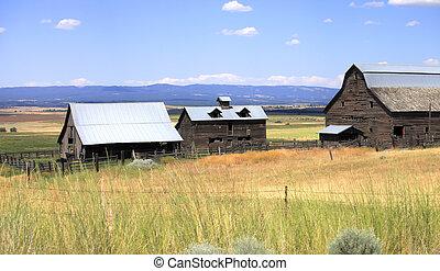 Old shacks abandoned, Washington st - Old shacks, barns in a...