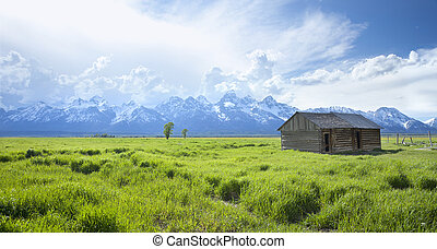 Old shed in grass field near the Grand Teton mountains
