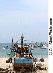 Old Ship on Beach