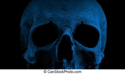 Old Skull Rotating In The Dark Closeup Loop