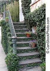 Old staircase covered with green creeping ivy plant. Savannah, Georgia, USA.