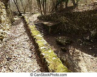 Old Stairs and a Mossy Wall in a Forest