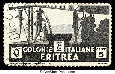 Old stamp from Eritrea on a black background.