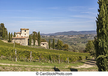 Old stone house on a hill with vineyards in Chianti in...