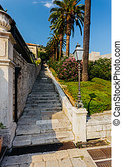 Old stone staircase with a palm tree in Dubrovnik, croatia.