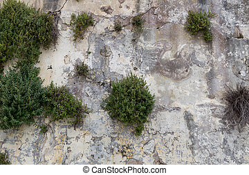old stone wall as background