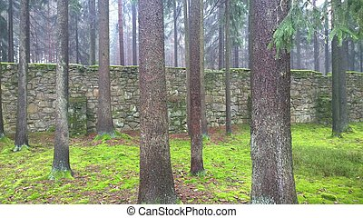 old stone wall in the woods, south Bohemia