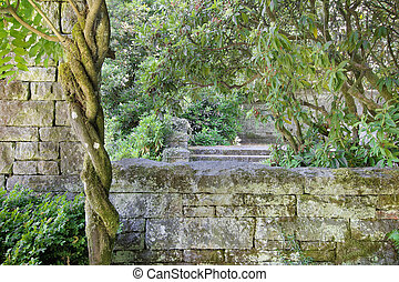 Old Stone Wall Structure with Wisteria Vine
