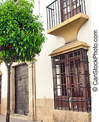 old street in Ronda in Andalusia, Spain