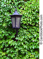 old street lamp on a wall
