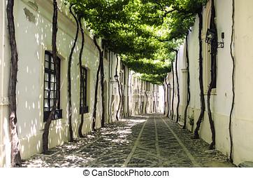 Old street, typical European - European landscape, where you...