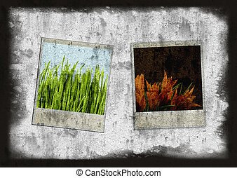 Old Style Camera Frames