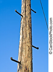 Old telephone pole with rungs for climbing on blue sky