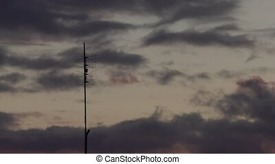 old television antenna against the sunset sky timelapse...
