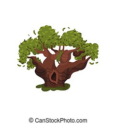 Old thick oak with a hollow. Vector illustration on white background.