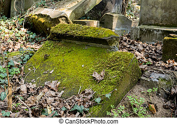 old tombstones covered with moss