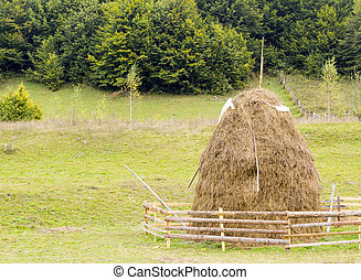old traditional haystacks, typical Romanian  rural scene