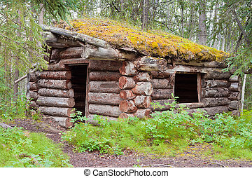 Old traditional log cabin rotting in Yukon taiga - Ruin of...