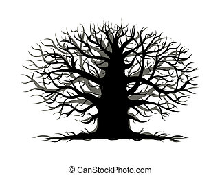 Old tree bare, silhouette for your design