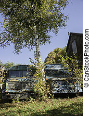 Old truck fronts falling apart from a lack of care and ...