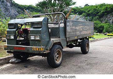 Old Truck in garden