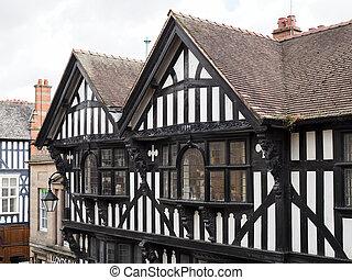 Old Tudor Buildings in Chester