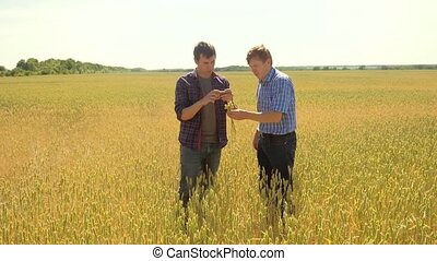 old two farmers explore are studying to your smartphone. man...