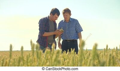 old two farmers summer handshake man on your smartphone...