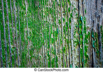 Old village fence with peeling green paint