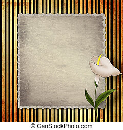 Old vintage card with calla on golden striped background