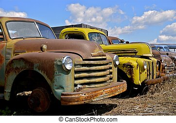 A row of old rusty vintage pickups are parked in a row, exposing the front grills and bumpers.