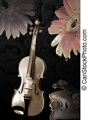 old violins and flowers - old wooden violins on black and...