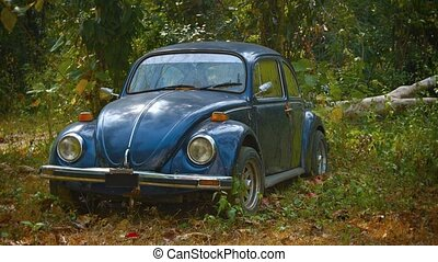 """Old Volkswagen Beetle, Abandoned in the Woods"" - ""Old, blue..."