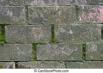 old wall of bricks