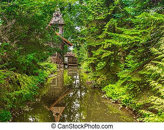 Old water mill in the forest