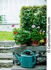 old watering can in a garden