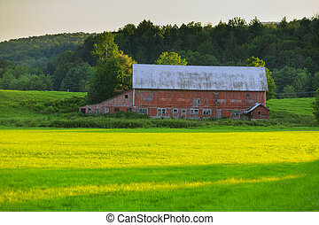 Old weathered barn in Stowe VT, USA - Weathered old red barn...