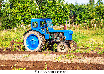 Old wheeled agricultural tractor working at the potato field