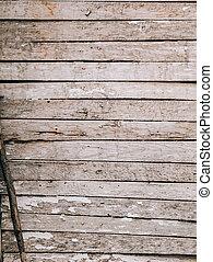 Old white doors. Wood texture
