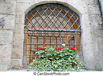 old window - flower pot in a window with bars