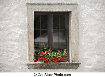 Old window with flower in the summer day